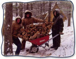 Troubled Boy Therapeutic Campers Gathering Firewood