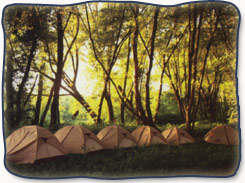 Therapeutic camp in the wilderness