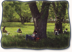 Campers relaxing at wilderness camp